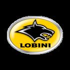 Comprar Frenos y Discos para Lobini EBC Frenos